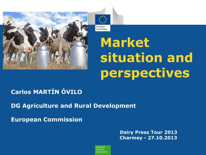 market situation and perspectives n.
