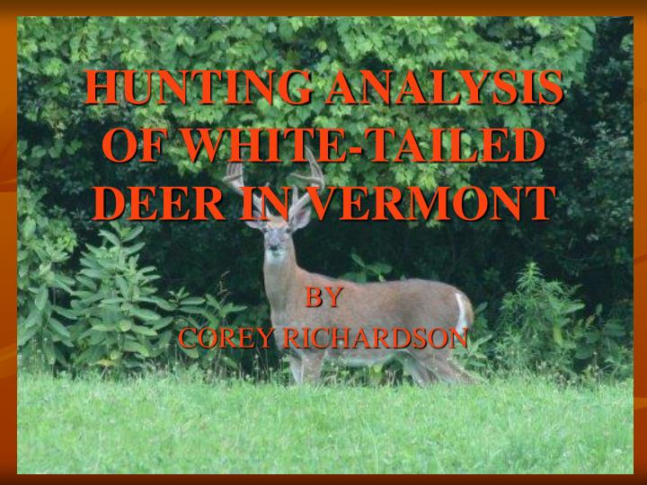hunting analysis of white tailed deer in vermont n.