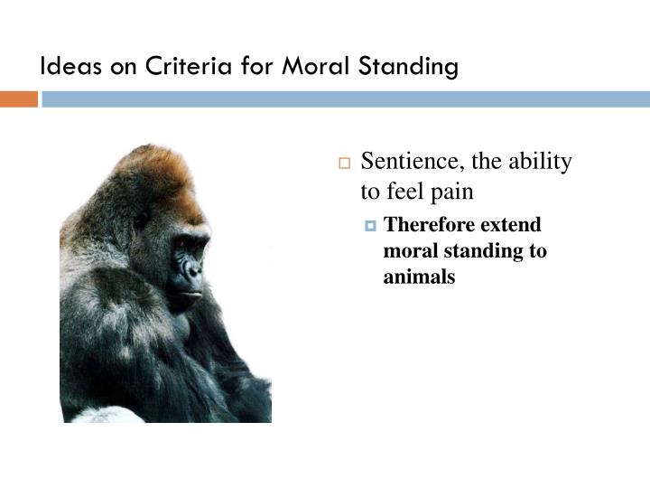 Ideas on Criteria for Moral Standing