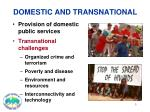 domestic and transnational