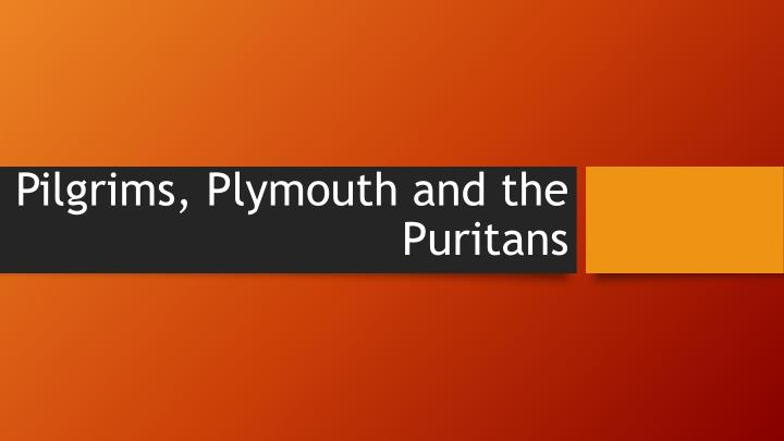 pilgrims plymouth and the puritans n.