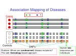 association mapping of diseases