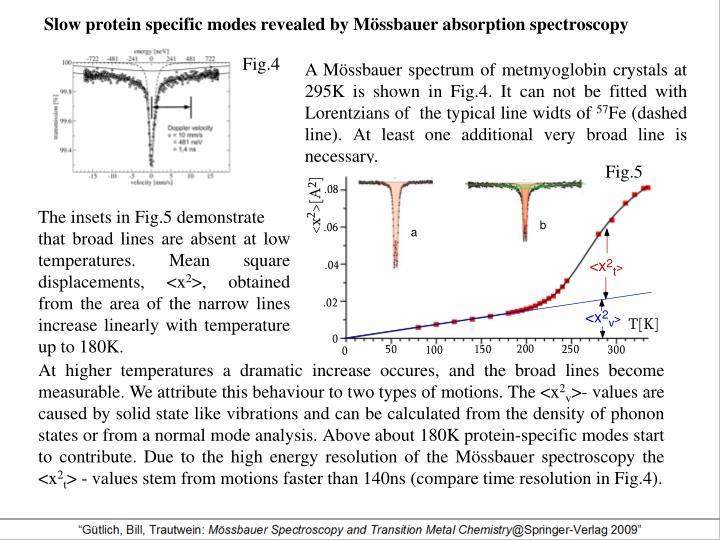 Slow protein specific modes revealed by Mössbauer absorption spectroscopy