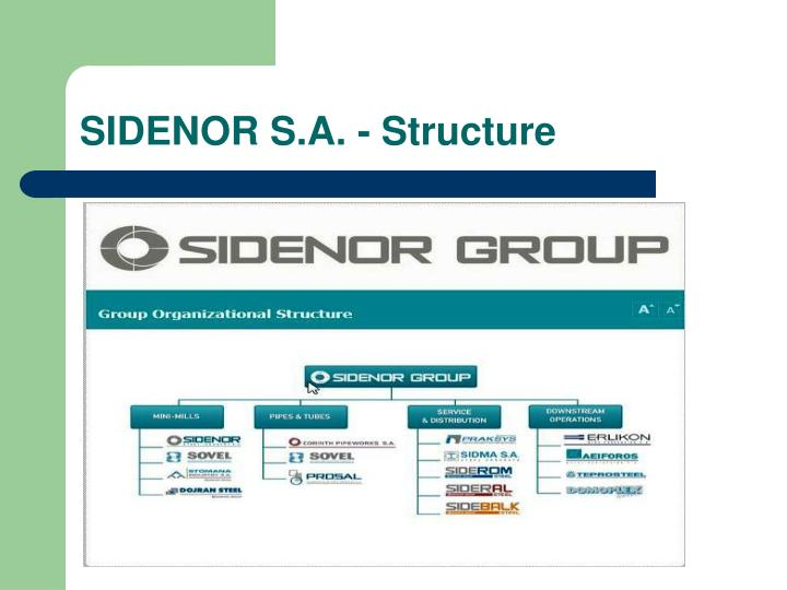 SIDENOR S.A. - Structure