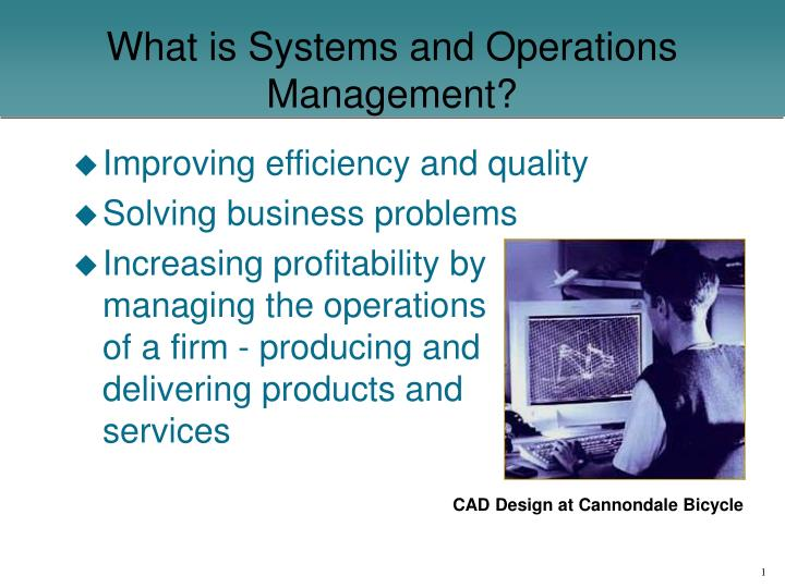 what is systems and operations management n.