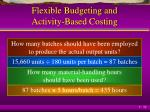flexible budgeting and activity based costing4