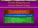 flexible budgeting and activity based costing5