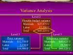 variance analysis1