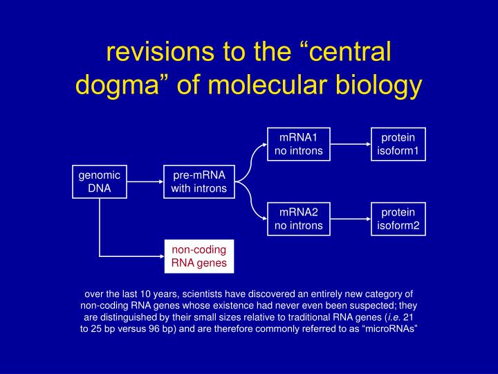 PPT Revisions To The Central Dogma Of Molecular Biology