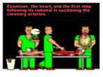 examines the heart and the first step following its removal is sectioning the coronary arteries