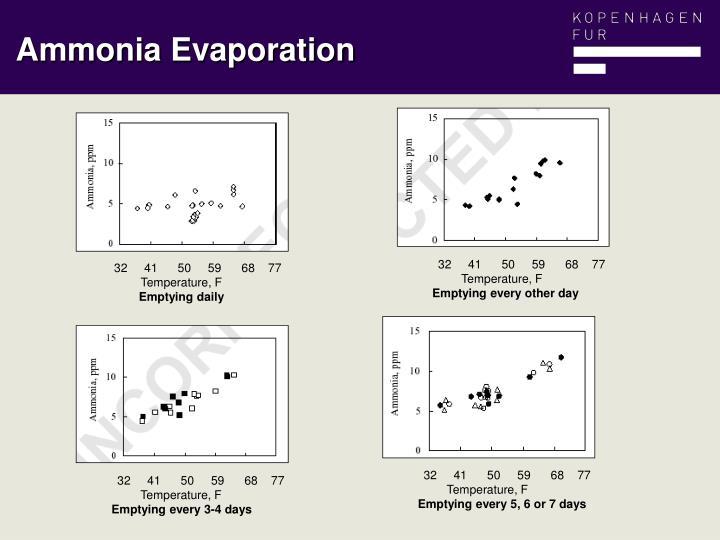 Ammonia Evaporation