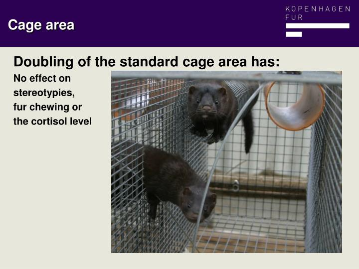 Doubling of the standard cage area has: