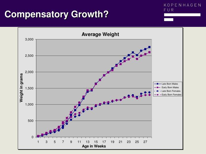 Compensatory Growth?
