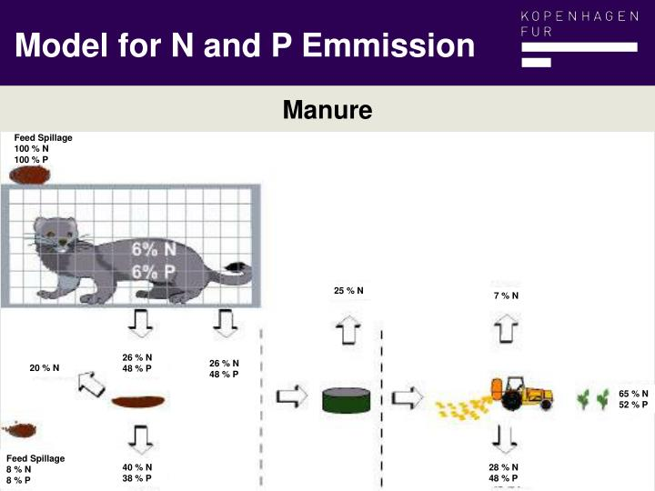 Model for N and P Emmission