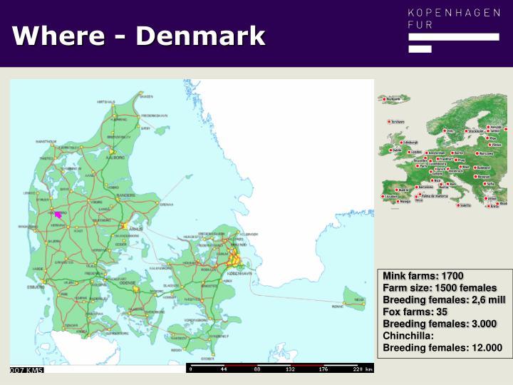 Mink farms: 1700