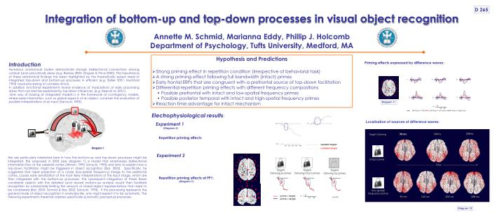 integration of bottom up and top down processes in visual object recognition n.
