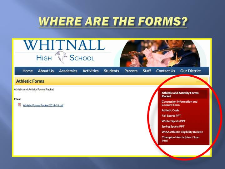 WHERE ARE THE FORMS?