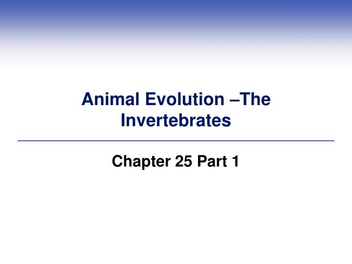 animal evolution the invertebrates n.