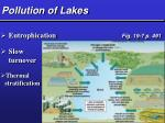 pollution of lakes