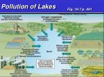 pollution of lakes1