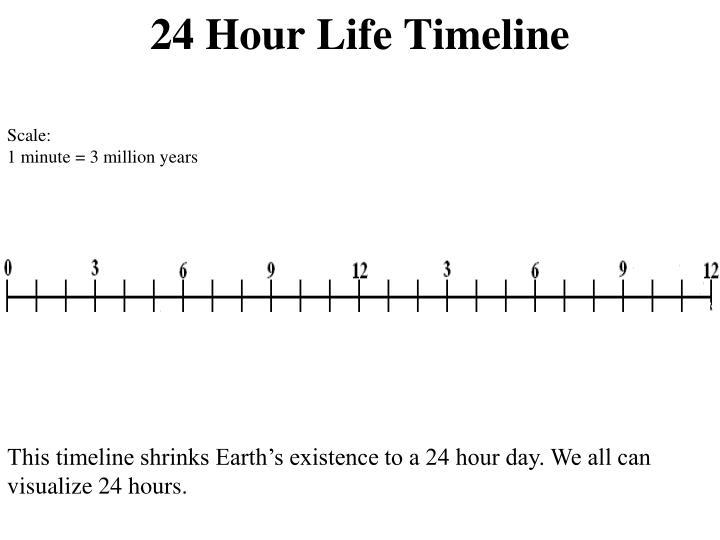 24 Hour Life Timeline