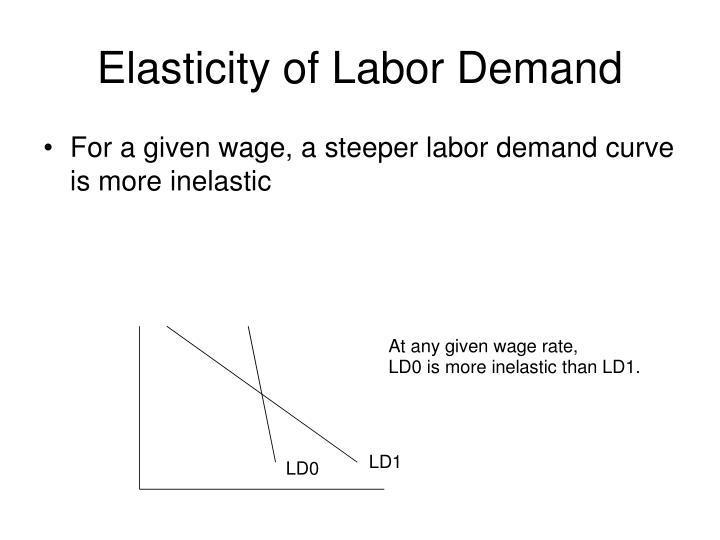 Elasticity of labor demand1