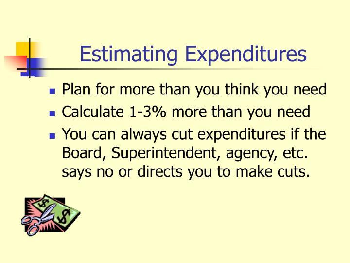 Estimating Expenditures