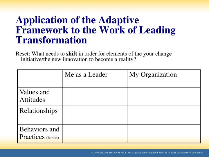 Application of the Adaptive Framework to the Work of Leading Transformation