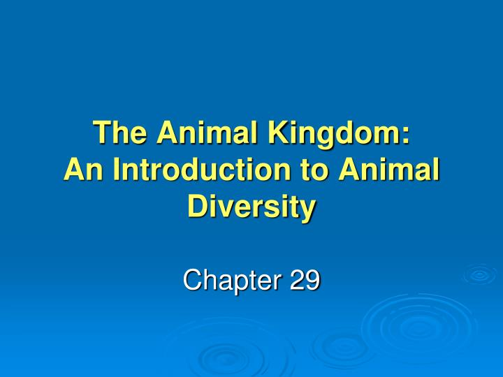 the animal kingdom an introduction to animal diversity n.