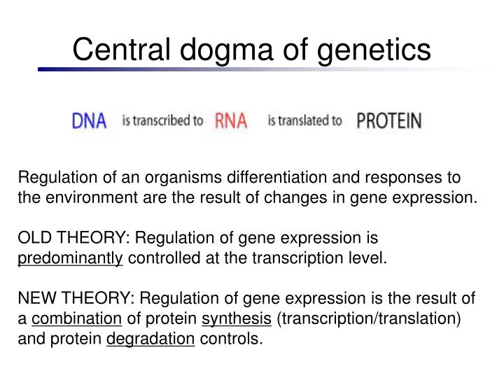 Central dogma of genetics
