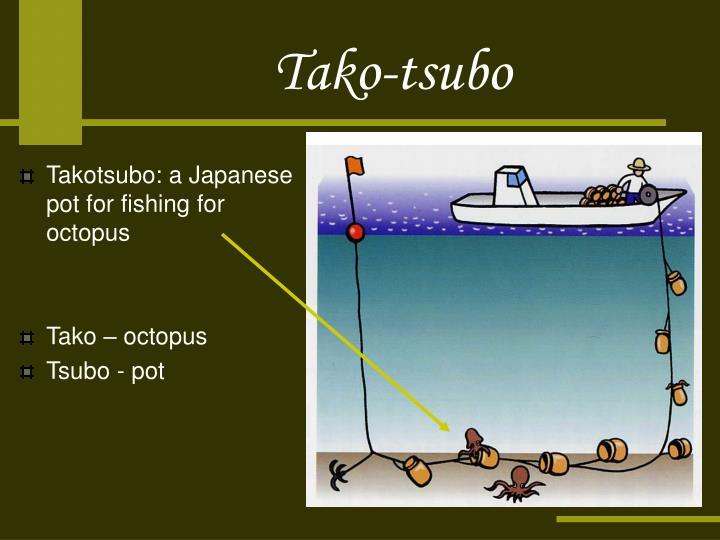Tako-tsubo
