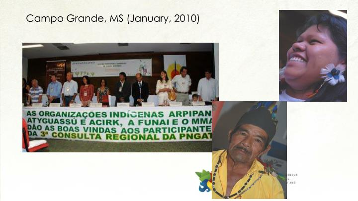Campo Grande, MS (January, 2010)