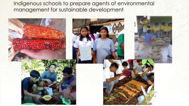 Indigenous schools to prepare agents of environmental management for sustainable development