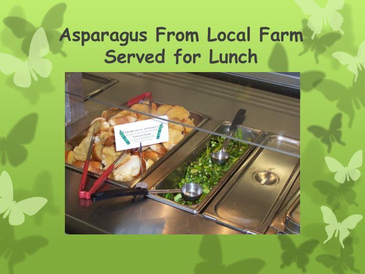 Asparagus From Local Farm