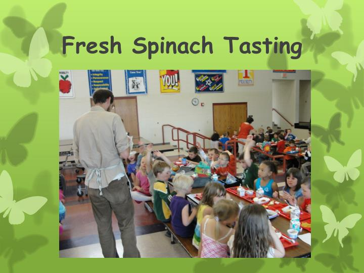 Fresh Spinach Tasting