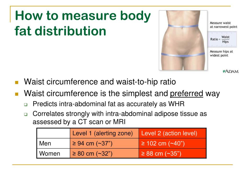 PPT - Lecture 2 Measurement of Obesity PowerPoint