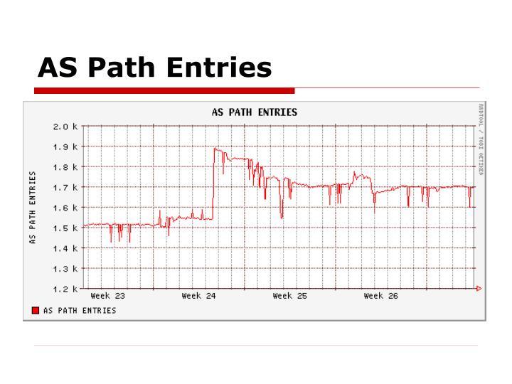 AS Path Entries