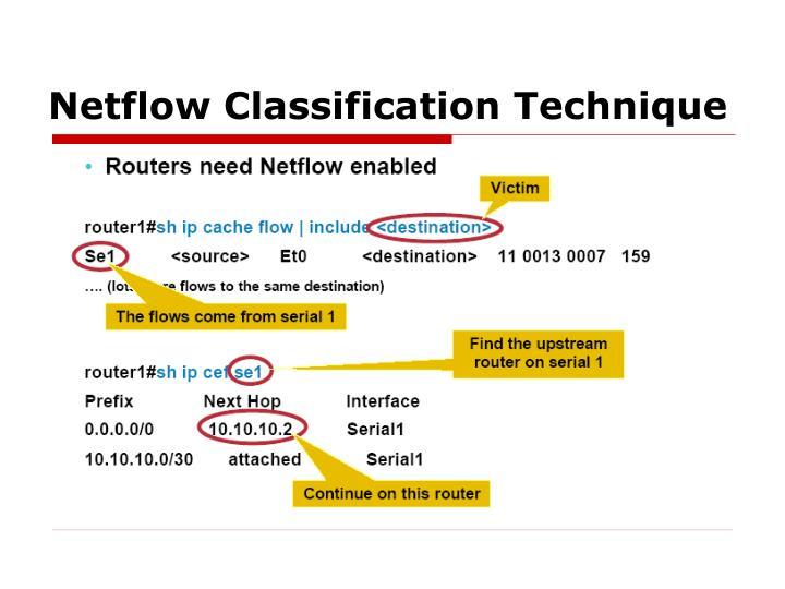 Netflow Classification Technique