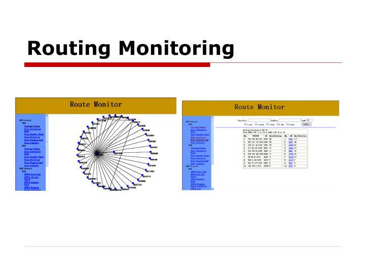 Routing Monitoring