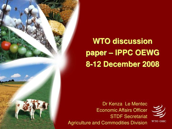 wto discussion paper ippc oewg 8 12 december 2008 n.
