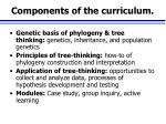 components of the curriculum