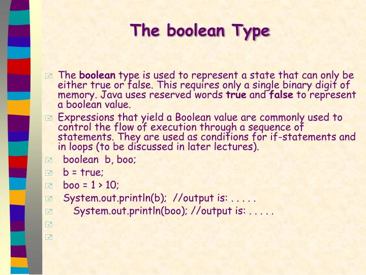 The boolean Type