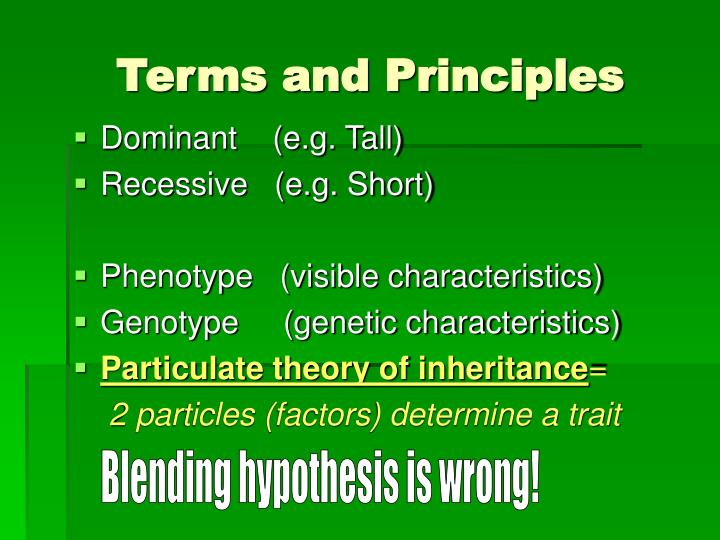 Terms and Principles