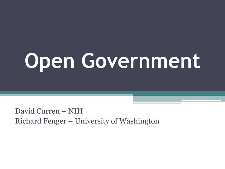 open government n.