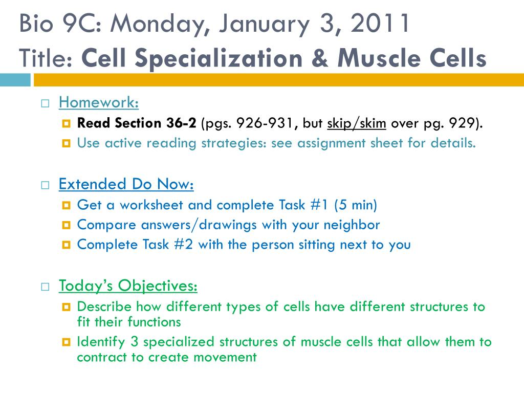 Ppt Bio 9c Monday January 3 2011 Title Cell Specialization Chicken Wing Anatomy Diagram Dissection The Body Muscle Cells N
