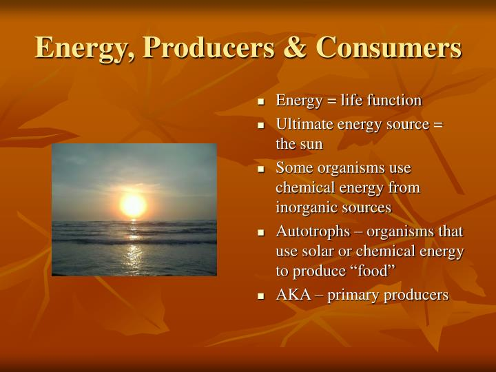 Energy, Producers & Consumers