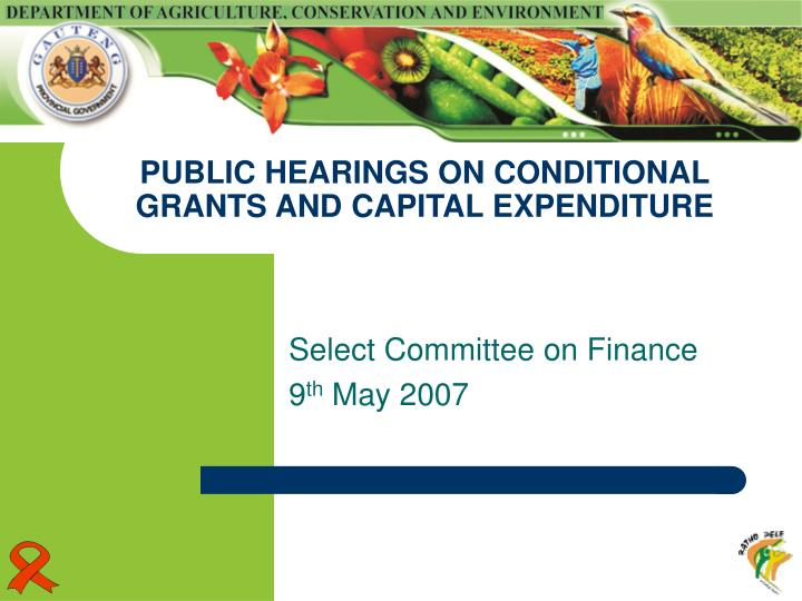 public hearings on conditional grants and capital expenditure n.
