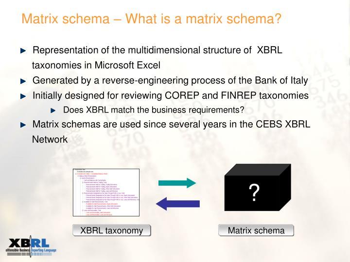 Matrix schema – What is a matrix schema?