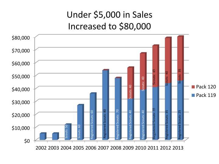 Under $5,000 in Sales