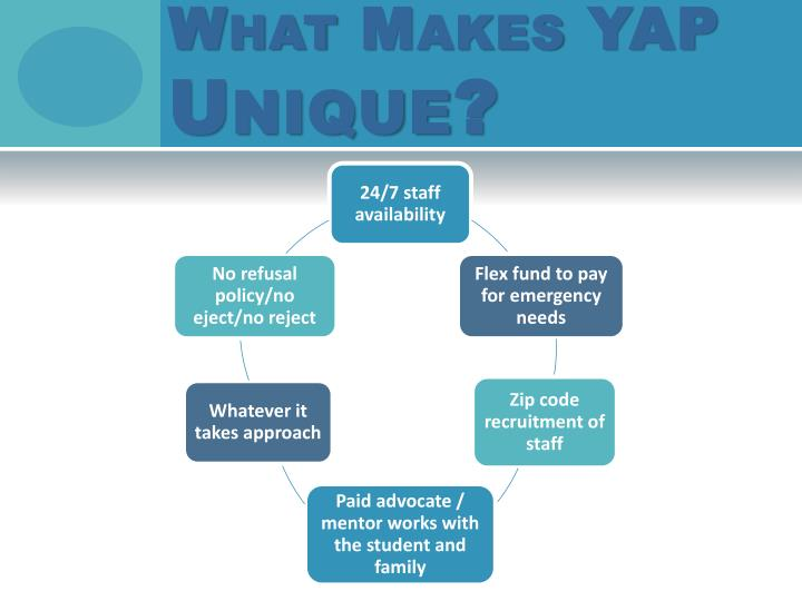 What Makes YAP
